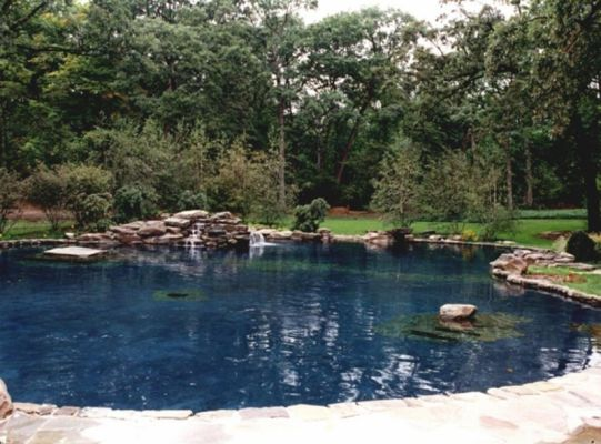 NATURAL SWIMMING POOLS GALLERY - Barrington Pools
