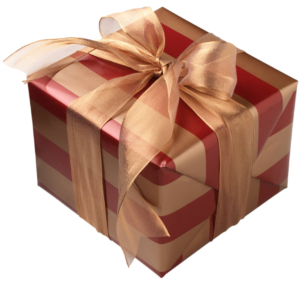 5 Ways To Wrap A Gift Of A Swimming Pool Barrington Pools