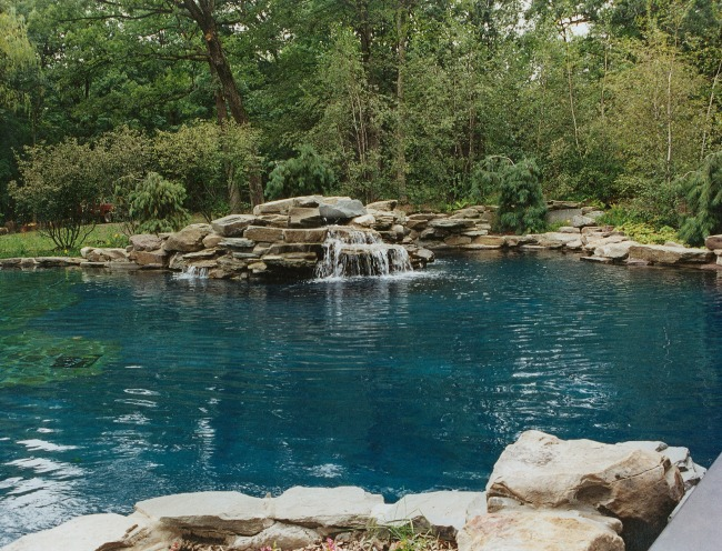 Swimming pool design barrington pools for Natural pool design